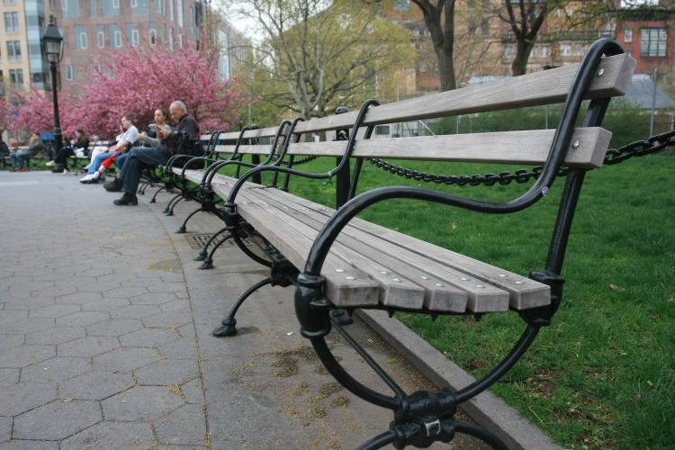Lessons From A Park Bench Pinchina